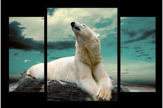 Модульная картина Белый медведь